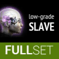 FULL SET OF LOW-GRADE AMULET (SLAVE) IMPLANTS