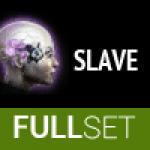 FULL SET OF MID-GRADE AMULET (SLAVE) IMPLANTS